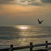 Laguna Beach...