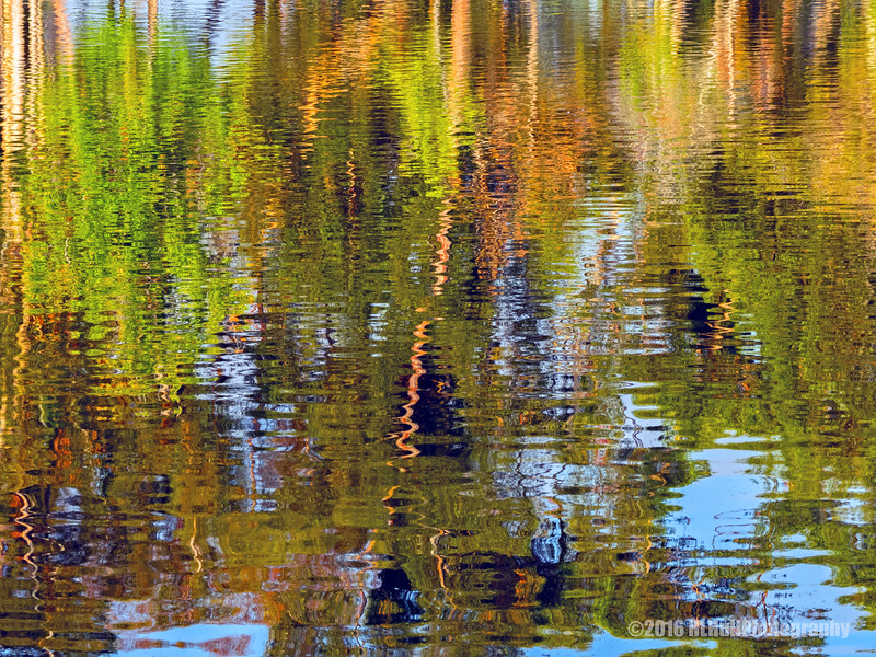 Reflections...