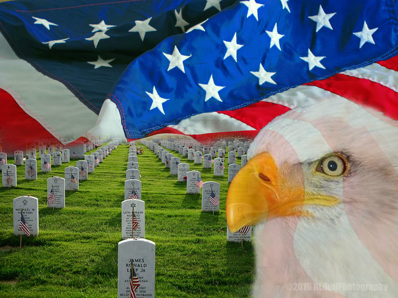 Remembering Those Who Have Fallen...