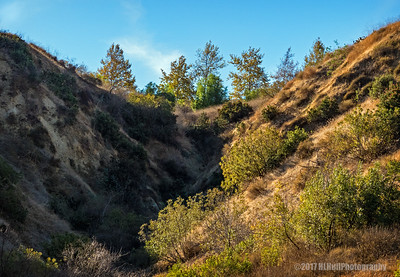 Carbon Canyon Regional Park