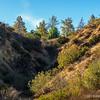 Carbon Canyon Regional Park...