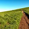 Hiking...
