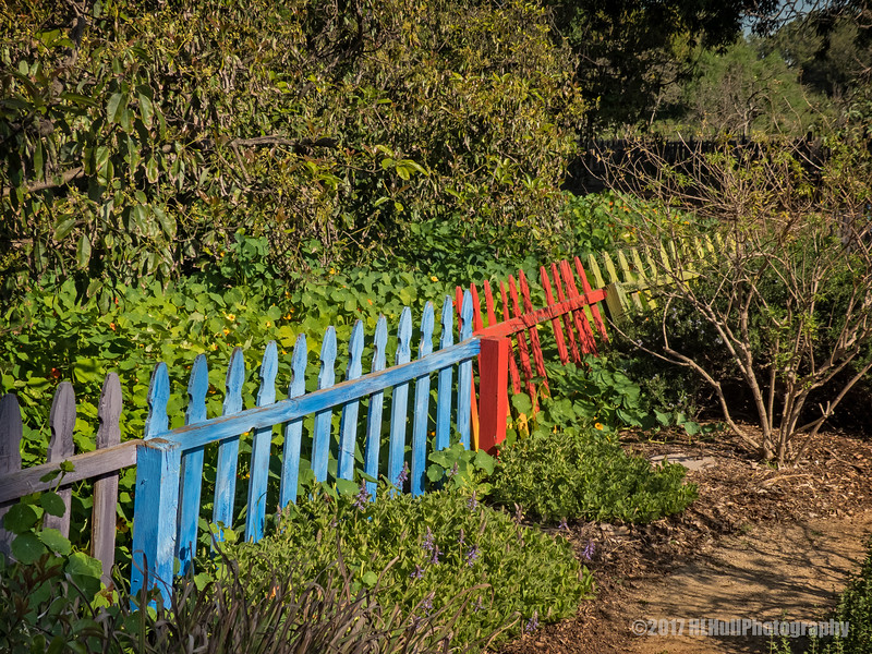 Colorful Fence...