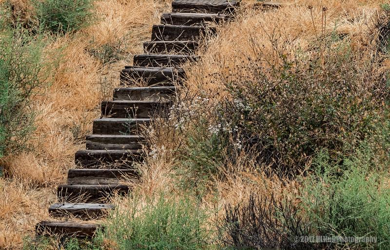 Old Wooden Steps...