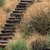 Old Wooden Steps...