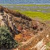 Bolsa Chica Wetlands...