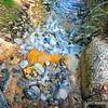 A small creek...