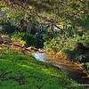 Meandering creek...