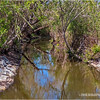 San Joaquin Marsh & Wildlife Sanctuary...