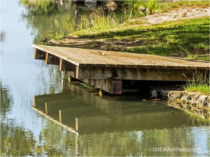 Dock...