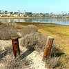 Upper Newport Bay Ecological Reserve ...