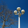 Took this shot at Mother's Market and Kitchen in Huntington Beach where we sometimes go to eat. It was a pretty Sunday morning and this white lamp post against the blue sky was just to much to resist!