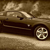 My son's 2009 Mustang GT...Maybe he'll let me drive it today?  : )))<br /> <br /> Happy Fathers Day! Have a great Sunday everyone!<br /> <br /> Thanks so much for all the generous comments this past week!