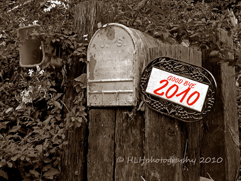 Good bye 2010....<br /> <br /> Late note: Just want to thank everyone for all your gracious comments this past year, or should I say nine months. March 7th it'll be 1 one year on SmugMug! It's sure gone by fast! It's been fun and I'm looking forward to 2011!