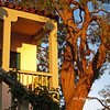 The beautiful golden tones and shadows on this second story apartment and tree, to me anyway, created by the late afternoon sun caught my eye. I liked it and thought there's a POTD! This btw, was taken in Santa Barbara a few weeks ago on our BD celebration week-end.<br /> <br /> Thanks to everyone who commented on my POTD's this past week. Much appreciated! <br /> <br /> Hope everyone has a great Sunday!