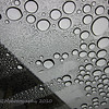 "12.26.10<br /> <br /> Raindrops Keep Falling On My...<br /> <br /> In this case on my sunroof. We've had lots of rain lately. Over 12.5"" since December 17th plus about another 3/4"" last night. The ""normal"" for the season is about 16.98"" according to one source. Next chance of the wet stuff - Wednesday.<br /> <br /> Hope everyones' Christmas was the best and thanks for all of your kind comments this last week. Have a great Sunday!"