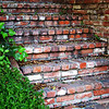I love these old, colorful brick steps with the green foliage. They seem to be very warm and inviting...to me anyway.