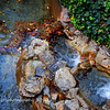 12.16.10<br /> <br /> Waterfall and leaves, Penn Park, Whittier, CA...