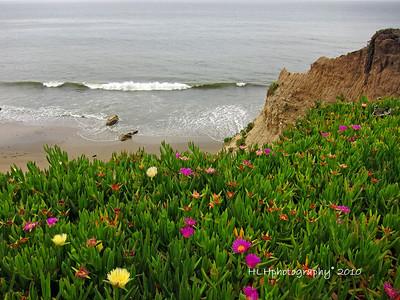 Santa Barbara May 2010