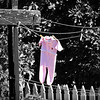 hung out to dry...<br /> <br /> Happened across  these little PJ's  at the Fullerton Arboretum, of all places! Thought it this was kind of cute, brought a smile to my face...hope it does yours, too!<br /> <br /> Fullerton Arboretum<br /> Fullerton, CA<br /> <br /> August 24, 2012
