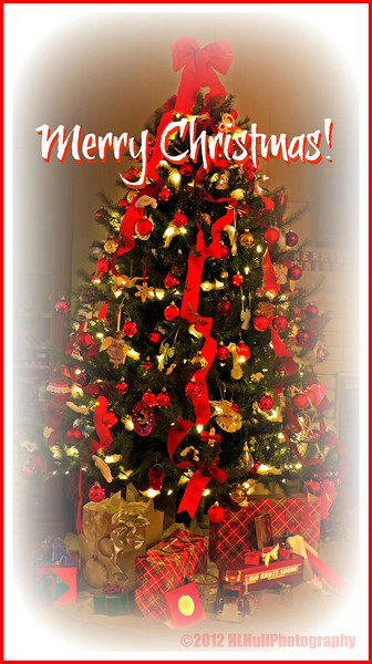 "Our Christmas Tree...<br /> <br /> We'll be celebrating Christmas today at my brothers' home in nearby Lakewood. Then, tomorrow, son Brian, will be joining us at our home for Christmas Day. Looking forward to seeing everyone! Hope you all have a great Christmas! <br /> <br /> They hurried to the village and found Mary and Joseph. And there was the baby, lying in the manger. After seeing him, the shepherds told everyone what had happened and what the angel had said to them about this child. All who heard the shepherds' story were astonished, but Mary kept all these things in her heart and thought about them often. The shepherds went back to their flocks, glorifying and praising God for all they had heard and seen. It was just as the angel had told them. Luke 2:16-20 NLT    <a href=""http://www.biblegateway.com"">http://www.biblegateway.com</a><br /> <br /> <br /> <br /> December 24, 2012"