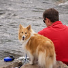 "June 26, 2010 - ""A Dog And His Man""<br /> <br /> Shot this by the Blue River in Breckenridge, Colorado."