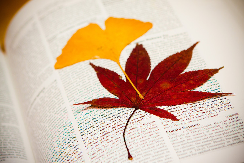 Just came across a couple of leaves that I put in my encyclopedia back in autumn