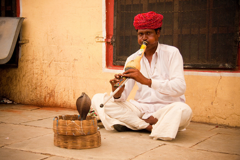 "Snake charmer. Jaipur, India.<br /> <br /> If your interested in seeing more shots from India, check out my gallery:<br /> <a href=""http://joeygoertz.smugmug.com/Travel/India/13553773_p4WFk#988017965_UfZ5k"">http://joeygoertz.smugmug.com/Travel/India/13553773_p4WFk#988017965_UfZ5k</a>"