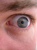 'I see you!'<br /> <br /> My friend Christian from work helped taking this picture of my eye. We wanted to see how well a point-and-shoot camera would work on one of these macro shot. I don't have access to any editing software right now, so this is straight out of camera. P.S. my eyes don't usually look this strained :) <br /> <br /> Sorry for not keeping up with the dailies. I'm not at home long enough to keep up... Ahh, excuses excuses...