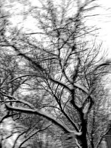2007-02-06  Snow
