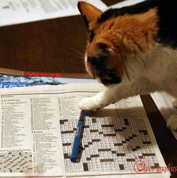 "Three letters, starts with ""c""<br /> <br /> (March 19) Gypsy puts the finishing touch on the Sunday crossword. Gus gave it a try too:<br />  <a href=""http://chaosgraphics.smugmug.com/gallery/1367468#137360770"">http://chaosgraphics.smugmug.com/gallery/1367468#137360770</a>"