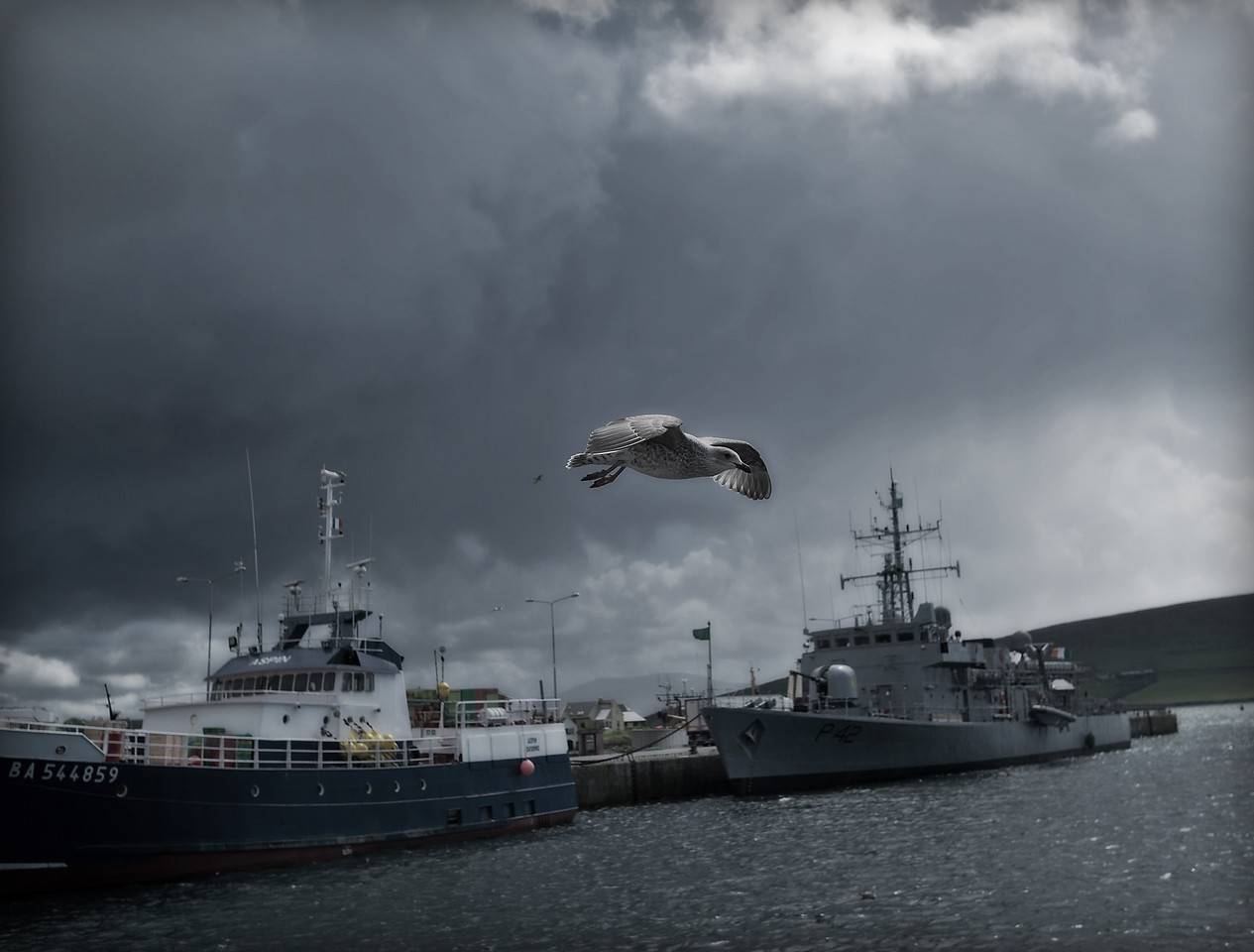 27/08/2011 'No bird soars too high if he soars with his own wings - William Blake' In the background of the picture there is an Irish naval ship which patrols the Irish coast for illegal fishing
