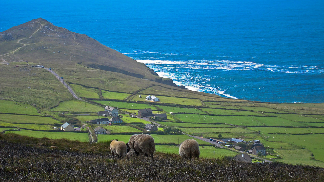 Very few tourists know this area of the Dingle peninsula.  A friend of mine took me there.  Less than two mins from here was where the village of the film 'Ryan's Daughter' was created starring Robert Mitchum and Sarah Miles
