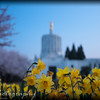 Saturday, April 4, 2009.<br /> <br /> Gabe, Noah, and I stopped at the Oregon State Capitol building here in Salem this afternoon to take some pictures of the blooming trees. We took several pictures that turned out really good and we were able to capture the building (and park) in the spring. We are hoping to go back tomorrow after church and take some more pictures since the weather is suppose to be nice again.