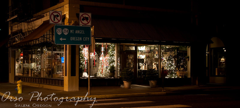 November 17, 2009.<br /> <br /> Gabe and I were in Silverton when we drove by this store with several Christmas trees inside, all lit up. It looked like a cool store, and maybe we can stop by when they are actually open.