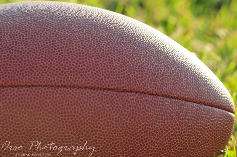 July 22, 2010<br /> <br /> I took this close up photo during one of Gabe's football practice this week. I didn't realize the details until I got home and had a chance to view this photo larger.