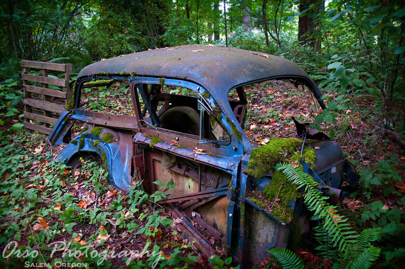 Sunday, October 9, 2011<br /> <br /> Gabe and I had the opportunity to photograph another High School Senior this morning, and while walking around in his property, we came across this old car that has been sitting there for a while... I took this shot before walking away.