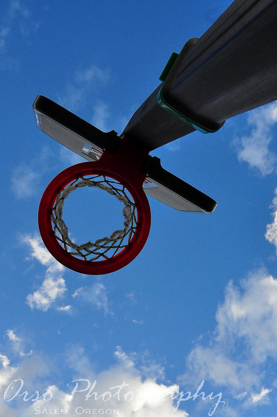 Tuesday, April 20, 2010<br /> <br /> Gabe took this shot over while playing basketball with Noah in the backyard. I really like the angle and the blue sky in the background.