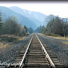 Thursday, February 19, 2009.<br /> <br /> This picture was taken at Viento Campground, by the Willamette River between Oregon and Washington. I like how the tracks lead to this beautiful scenery, very peaceful...