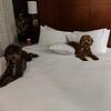 Sister, Should We Make Room For Mommy? -- 12/22/17