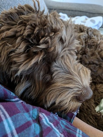 Read Me A Story -- 10/25/17