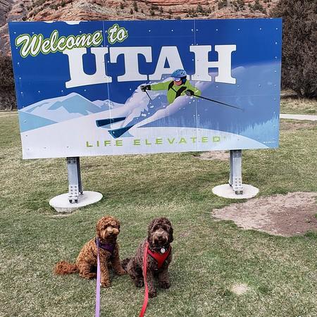 Utah! -- 04/05/18