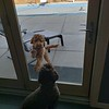 Not Funny Sister, Let Me In! -- 03/17/18