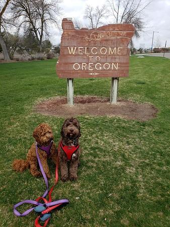 Oregon -- 04/06/18