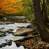 "autumn at Turkey Creek Nature Preserve <p></p> honestly, i blew the shot, this version turned out better: click <a href=""http://bit.ly/tHqLO0"">here</a>."