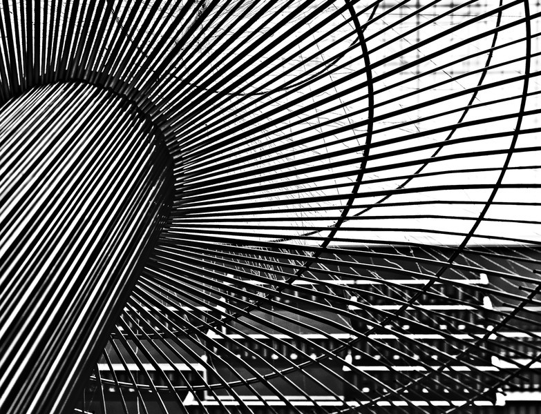 curves, lines, and intersections