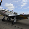 P51, a real beauty