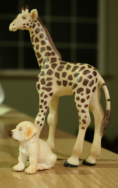 """Jan. 5, 2009: Giraffe and Puppy.<br /> <br /> Today was an uninspired and hectic day. Boy, am I glad we packed yesterday. With all the adjustments and additions made today, I cannot help but wonder what might have been.<br /> <br /> At the end of the day, I looked around for something, anything, that would spark my interest and all I could think was, """"Is it bedtime yet?"""" <br /> <br /> So, I tried to set up these toys in a vaguely interesting shot. I was once again thankful for my Gorillapod. Not because I used it. Because I had packed it and I could have used it. Although, truthfully, a regular tripod might have served me better. But that is currently in Louisiana so it matters not. :) Oh well.<br /> <br /> Page 4 informed me that references in the book assume the user has equipped the kit lens. I cannot decide if that means I should use the kit lens if I am exploring a new technique or not. <br /> <br /> Today, I played the """"follow me"""" game on flickr. I clicked through groups and links and looked at pictures as they showed up. Some I liked, some I did not. Should I be looking at something in particular? Should I be focussing on shots that are part of a genre I am interested in? What genres am I interested in?<br /> <br /> So many questions."""