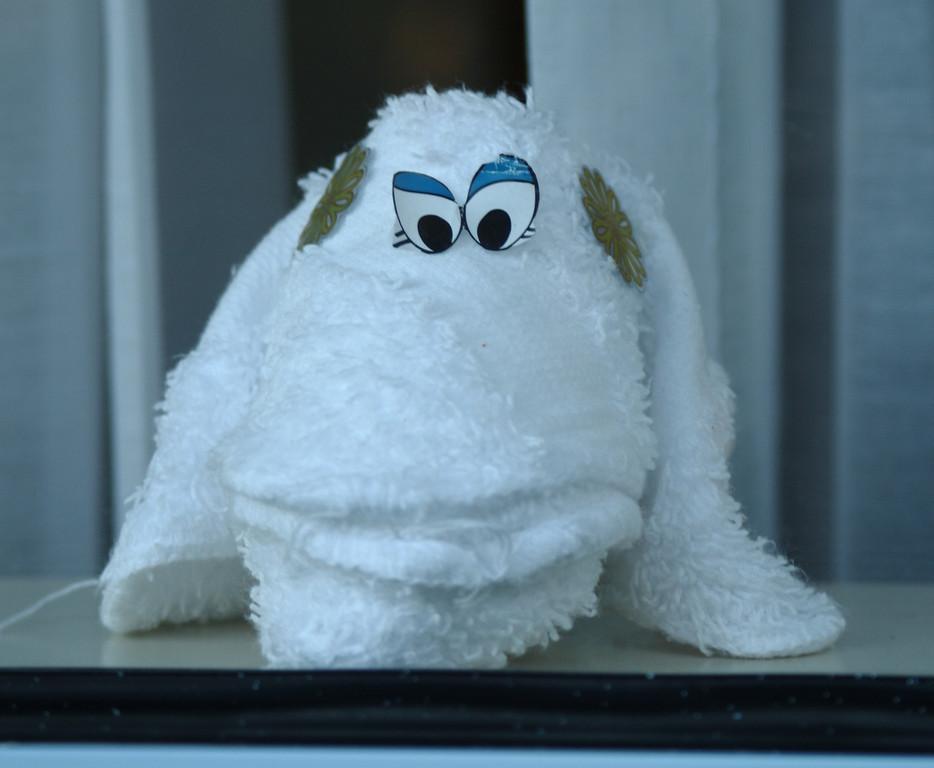 Jan. 26: Washcloth Friend