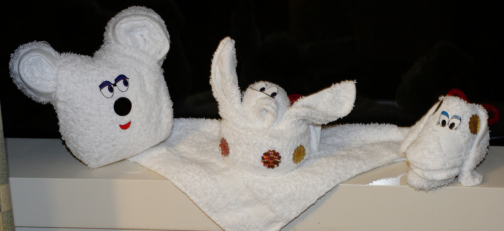 Jan. 31: More Washcloth Friends